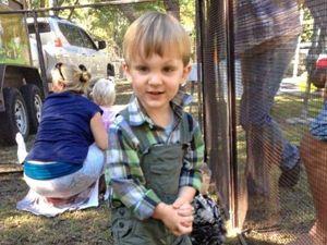 Community doubles snakebite victim's Gofundme target