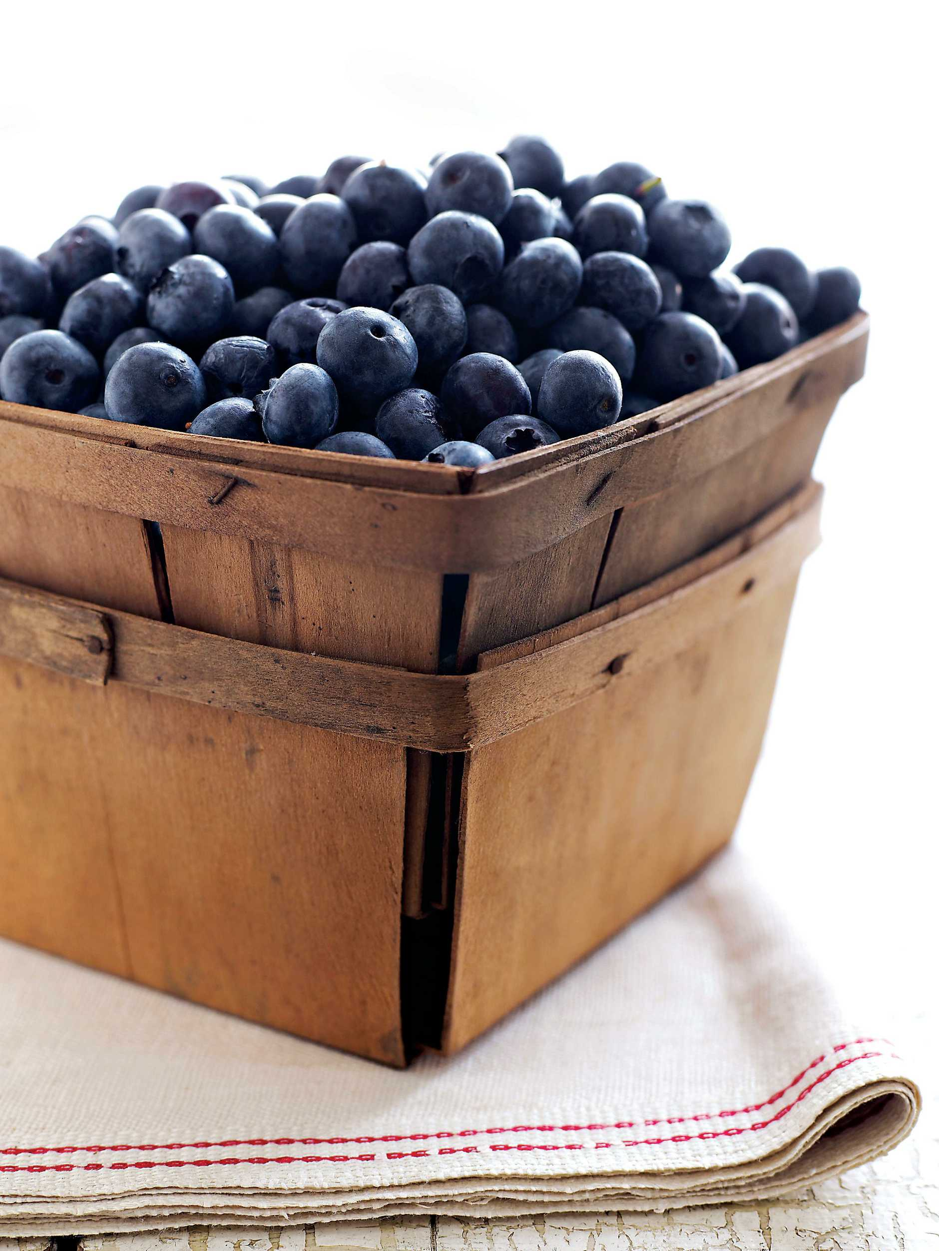 It's time to find a spot for a blueberry bush.