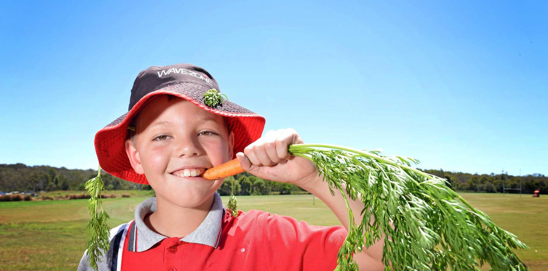 Crunch time for Wyatt Andrews in the Tin Can Bay state school's kitchen garden.