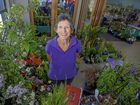 Vibrant blooms on show at Stanthorpe Gardenfest