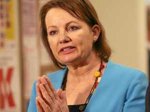 Sussan Ley's awkward return to social media