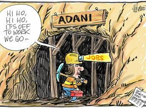 What does it all mean: Adani gets 'critical' status