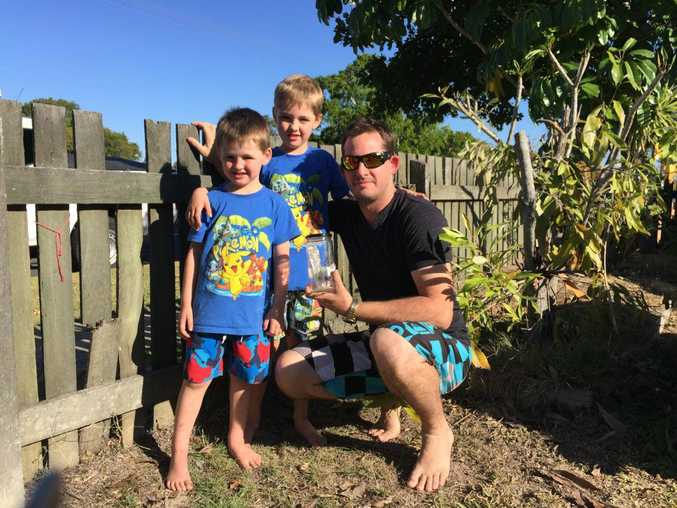 James, Brody and Heath Hatchman with the needles James found in the front yard of their Maryborough home.