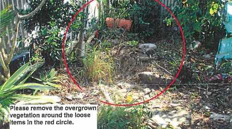 The photo provided by the Mackay Regional Council which shows the section of Larry's garden considered to be overgrown.