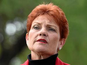Premier slams Steve Dickson's One Nation dance