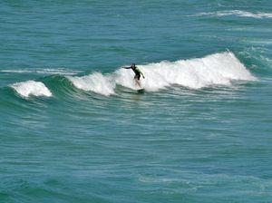 SURF ALERT: Fun waves set to lift our spirits