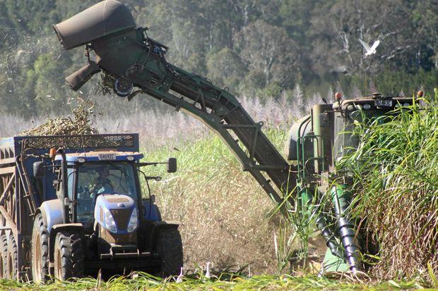 CRUSH SEASON: Bundaberg Sugar's mills crushed  76,055 tonnes last week.