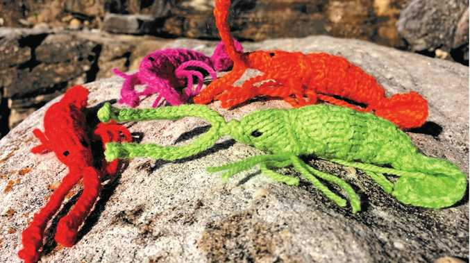 PRAWN STARS: Knitted prawns star in an  artwork  by arts troupe KnitPic for the first ever Ballinale.
