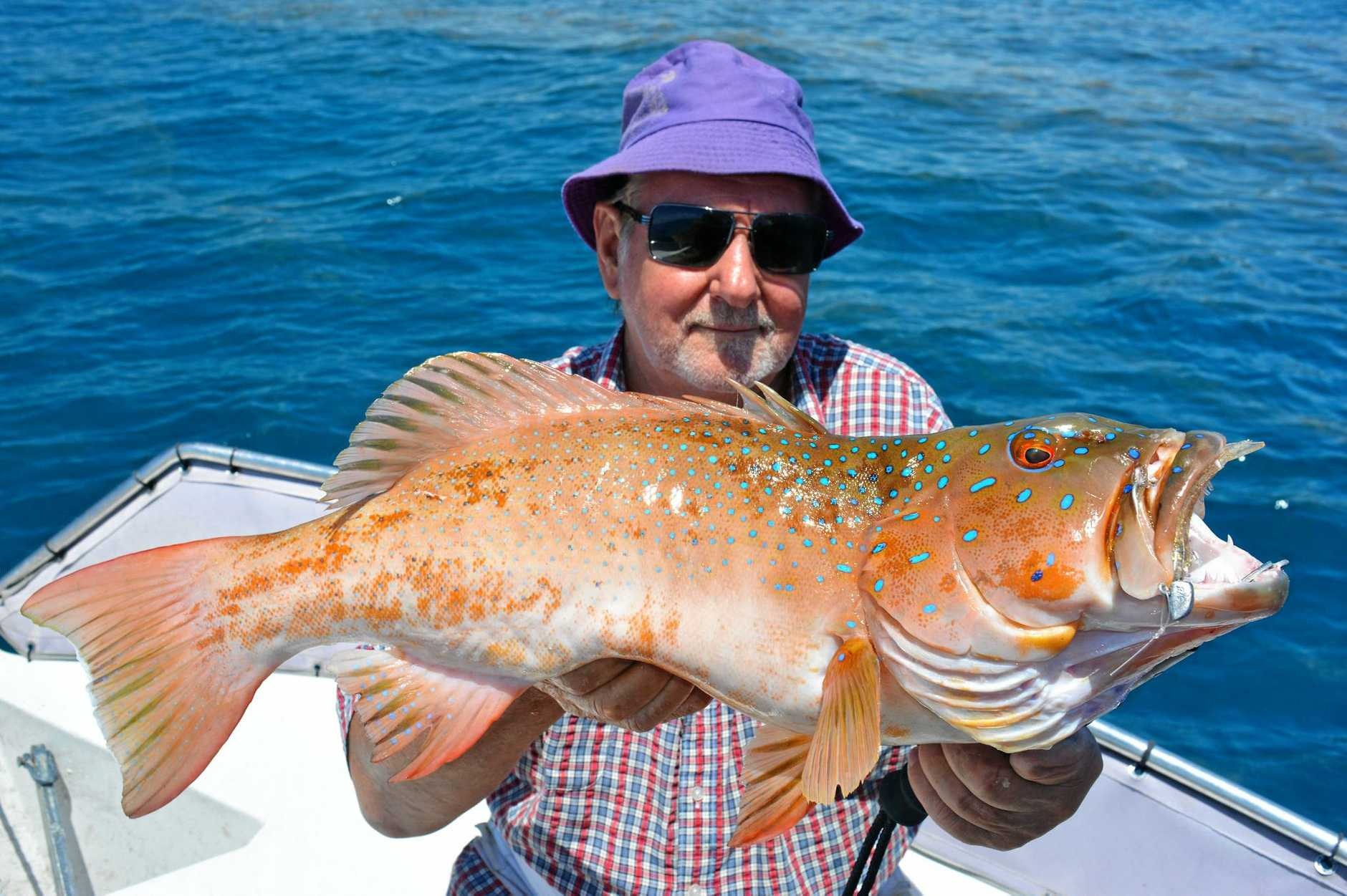 TROUT ABOUT: Proserpine retired chef Mark Christian holding a fat trout.