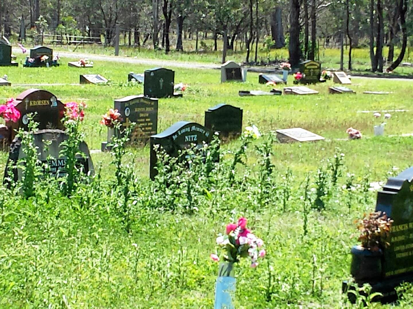 OVERGROWN: Kathy Durrant has expressed concerns over the ground maintenance of the Laidley Cemetery.