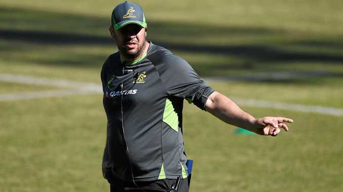 Australian rugby union coach Michael Cheika looks on during training session in Sydney.