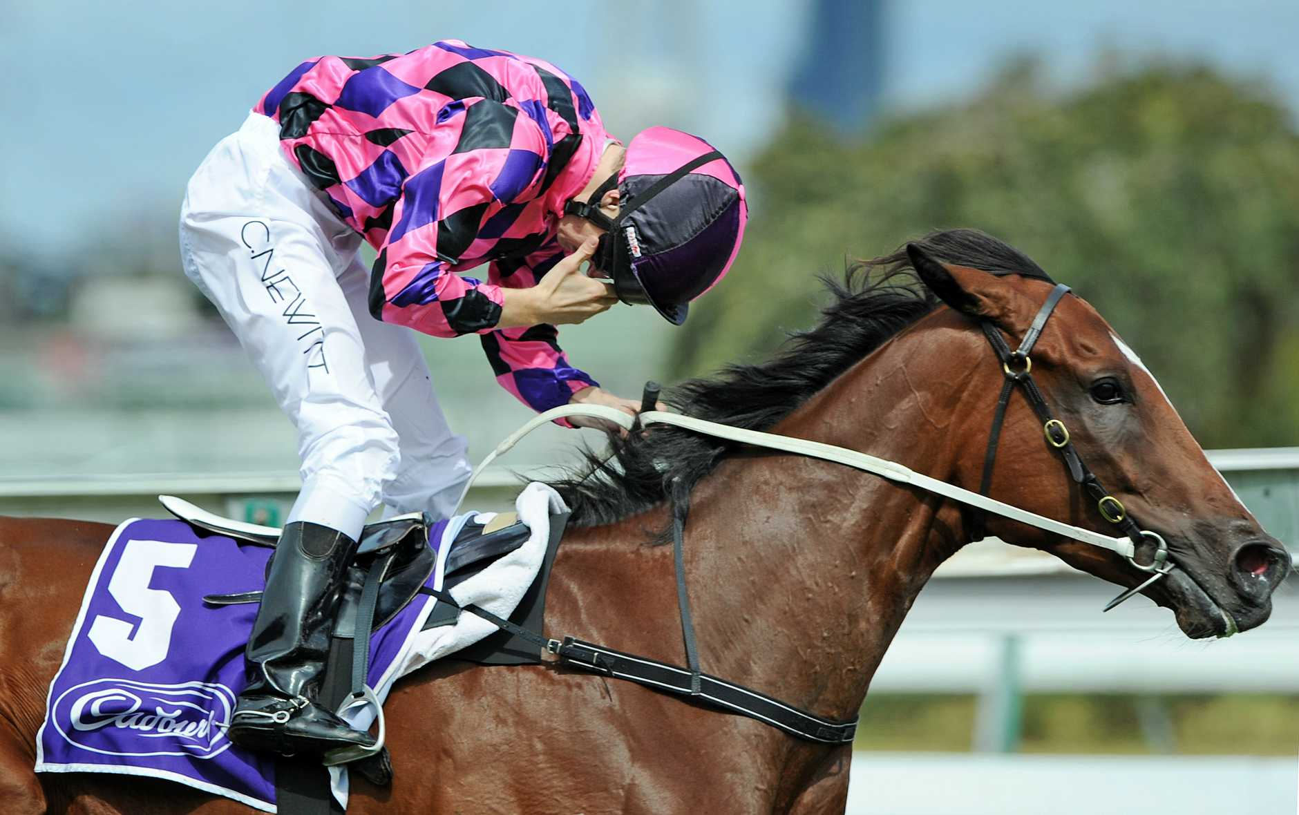 An emotional Newitt rides Heart of Dreams past the finish line to win the $750,000 Cadbury Guineas at Flemington race track in March 2009. Newitt dedicated the win to his father who had died the previous week.