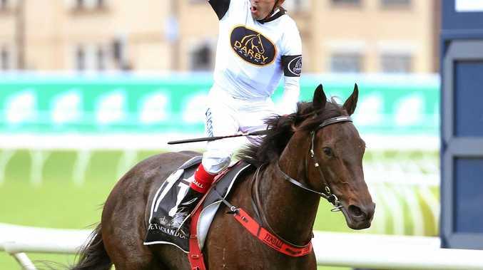 Jockey Dean Yendall on Yankee Rose celebrates winning the Spring Champion Stakes at Randwick.