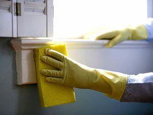REVEALED: The top 10 cleaners in Rocky