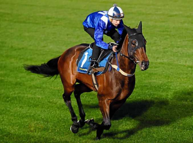 Winx, ridden by Hugh Bowman, goes through her paces in trackwork ahead of the Cox Plate.