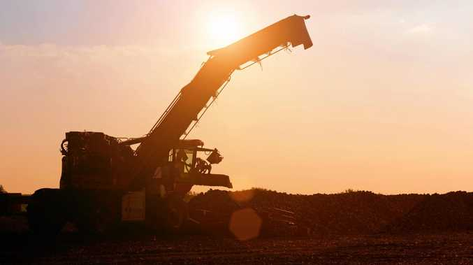 Looking to the future, Mackay Sugar expects positive results, with analysts predicting a global production deficit over the next few years.