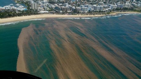 Coral spawn and sea lice swept into Mooloolaba en masse only a month ago. Here it is from above.