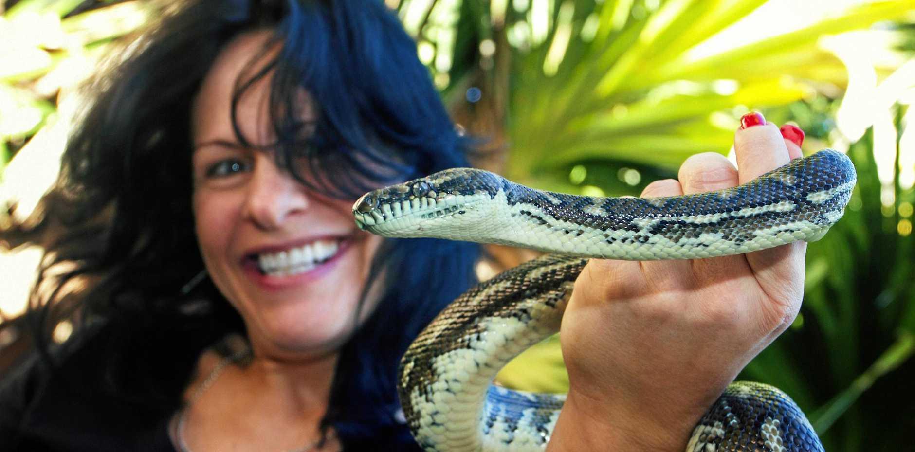 Brisbane snake catcher Julia Baker returns in season two of Snake Boss.