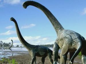 New Dinosaur is an Aussie