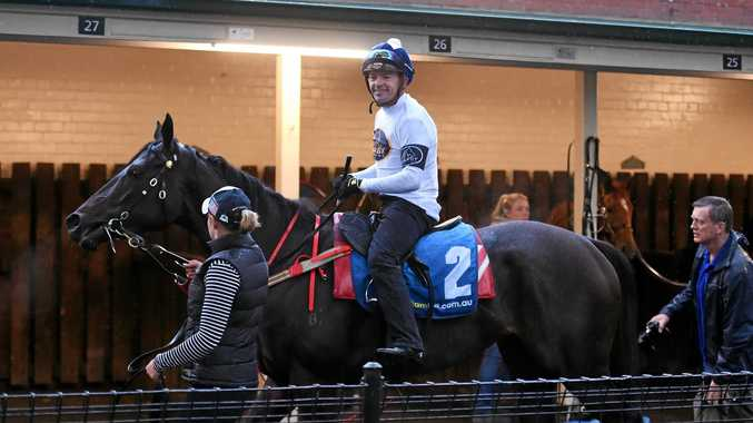 ON THE BIG STAGE: Yankee Rose and jockey Dean Yendall at The Valley ahead of the Cox Plate.