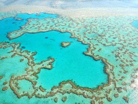 Heart Reef in the Great Barrier Reef.