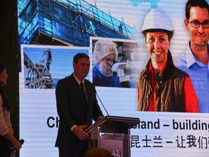 Chinese free trade deal unlocks opportunities: Pitt
