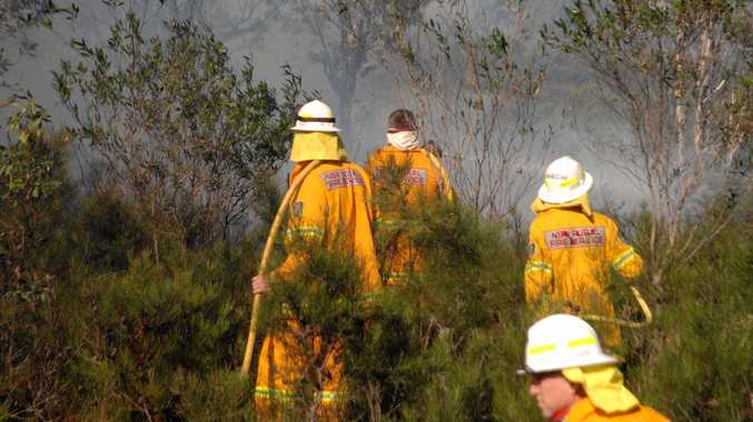 Firefighters work through scrub to put out bushfires near Brooms Head last October.