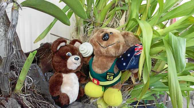 GOOD CAUSE: The Moscow Olympics bear and the Sydney Olympics Koala Bear will be part of the Parkinson's NSW Auction.