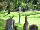A round of golf at Twin Waters Golf Club under the gaze of the local kangaroos. Photo: Che Chapman