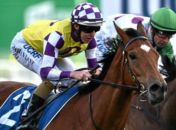 Damian Lane rides Sacred Elixir to victory in the Super Vase at Moonee Valley in Melbourne on October 22.