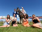 COME JOIN US: Toby McIntosh holds thoroughbred Dixie Away, with Bella Rabjones at the reins, while Emily-Mae Rahmate, Holly Julius, Kelly Wolfe and Lauren Dennison enjoy a glass of champagne at Murwillumbah race track ahead of Melbourne Cup day.