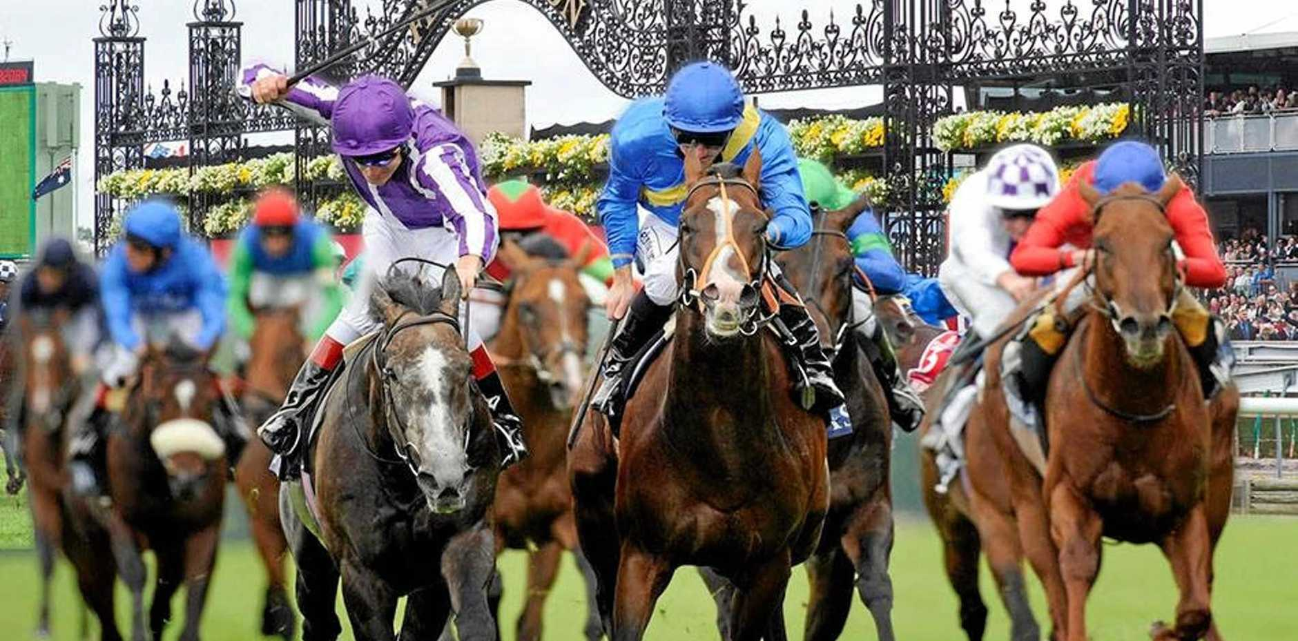Melbourne Cup could be a wet weather race.