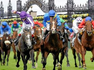 Melbourne Cup 2016: It could be a wet track