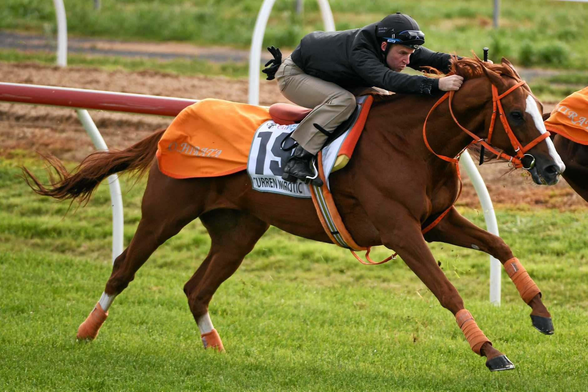 Tommy Berry rides Curren Mirotic of Japan during a trackwork session at Werribee.