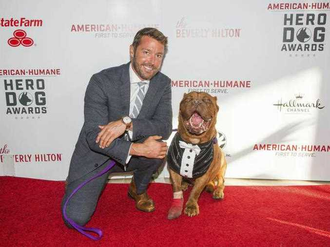 The American Humane Association will honor Hooch as Hero Dog of 2016 on Oct. 28 on the Hallmark Channel.