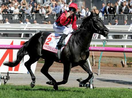 Glyn Schofield celebrates on Prized Icon after winning the Victoria Derby.