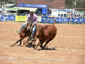 CQ riders just miss out on Gold Cup