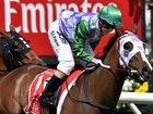 An Australian film company is seeking a young horsewoman to play jockey Michelle Payne.