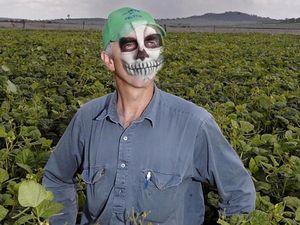 Felton group labels Ambre mining 'zombie apocalypse'