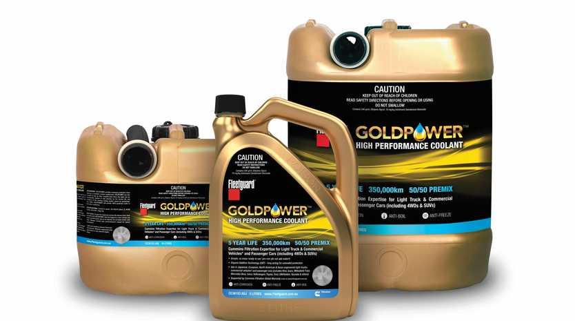 GOLDEN POWER: The GOLDPOWER group.