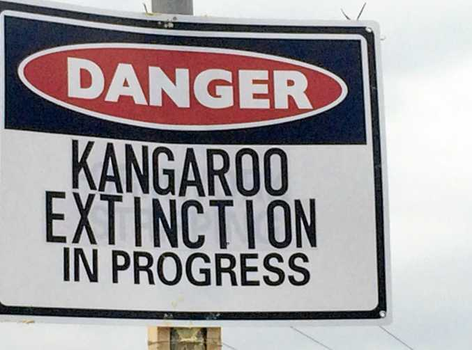 The sign that's appeared on the edge of a site at Twin Waters West that is now the subject of a Sunshine Coast Council rezoning bid.