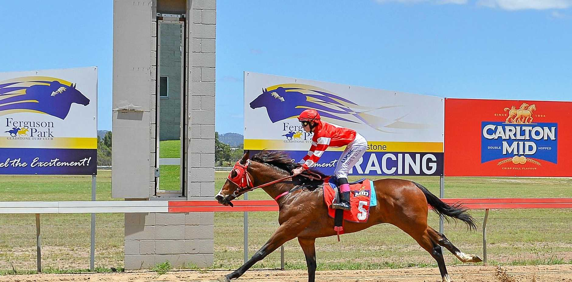 ROMPING WIN: That Pretty Girl strides to first place in race of the Melbourne Cup meet at Ferguson Park. Local Denis Schultz is the trainer.