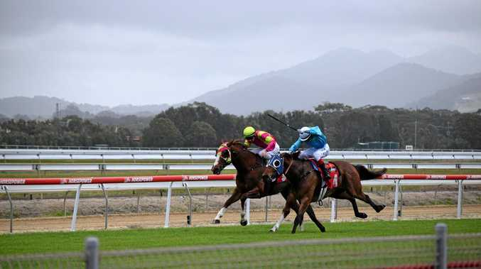 Mexican Mountain gets chased down by My Boy Louie in the second race at the Coffs Harbour races on Tuesday, November 1.