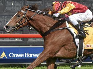 Grafton's newest jockey has plenty on plate for Jaca Cup