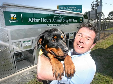 DOG DAYS: Former council pound spokesman Andrew Antoniolli with Delilah the dog at the opening of the local after-hours animal drop-off.
