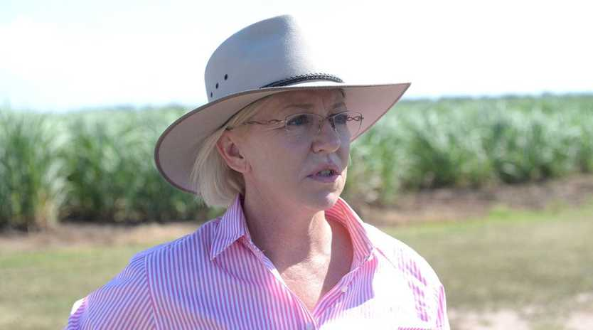 Minister for Agriculture and Fisheries Leanne Donaldson.Photo: Mike Knott / NewsMail