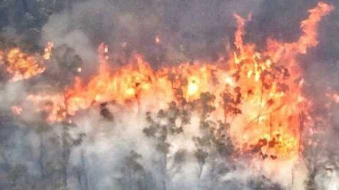 The Fortis Creek National Park bushfire has burnt out more than 7,200 hectares of bushland north of Grafton.