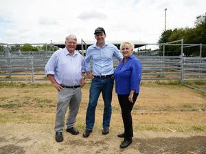 interim report of the ACCC cattle and beef industry market