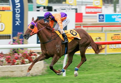 Adrian Coome on Our Boy Malachi winning the Newmarket Handicap at Callaghan Park. Photo: Chris Ison / The Morning Bulletin