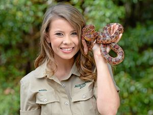 Bindi Irwin: Why I'm devoted to fulfilling my dad's dream